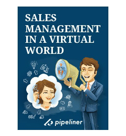 Sales Strateges eBook: Sales Management in a Virtual World